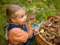 Первые признаки (симптомы) отравления грибами