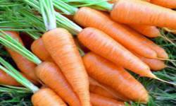 Маска из моркови от прыщей