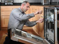 repair-dishwasher-quiz-250x150